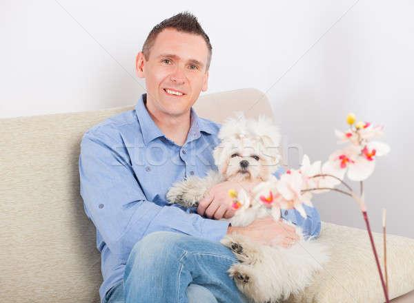 Perro propietario pequeño sesión sofá casa Foto stock © Amaviael