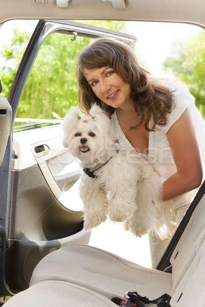 Kutya autó gyönyörű nő nő utazás hát Stock fotó © Amaviael