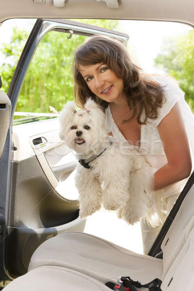 Getting dog into a car Stock photo © Amaviael