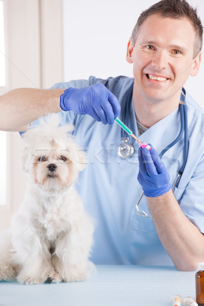 Stock photo: Vet dog and client