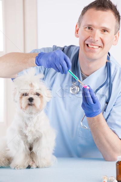 állatorvos kutya ügyfél mosolyog oltás férfi Stock fotó © Amaviael