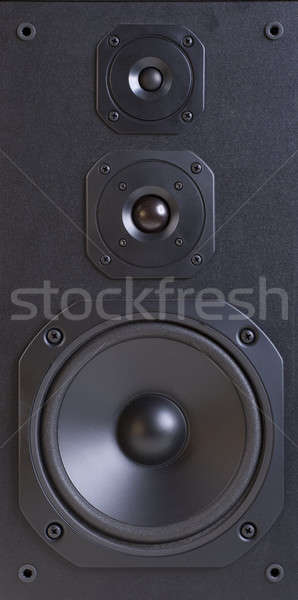 Speaker system Stock photo © Amaviael