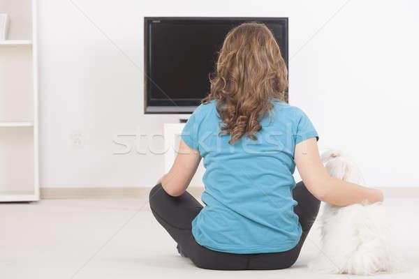 Mujer perro viendo tv junto cute Foto stock © Amaviael