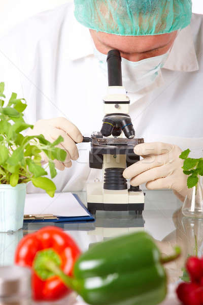 Researcher with GMO vegetable in the laboratory Stock photo © Amaviael