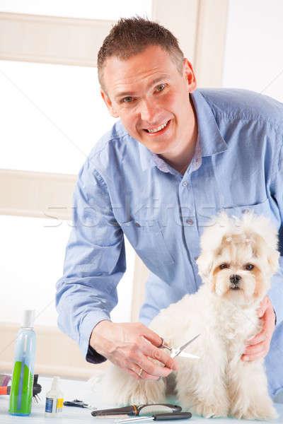 Perro sonriendo hombre mano pelo belleza Foto stock © Amaviael