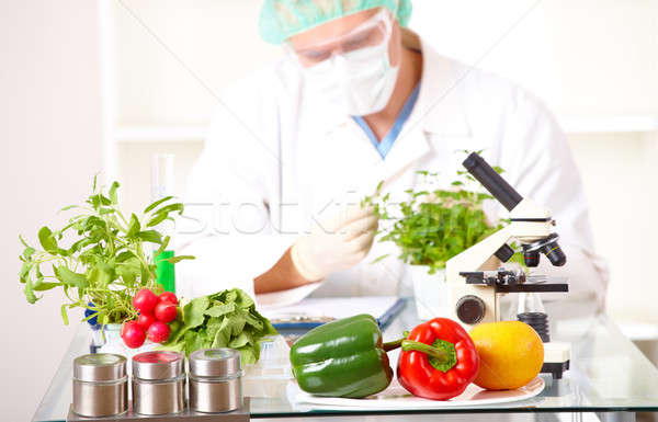 Stock photo: Researcher with GMO plants  in the laboratory