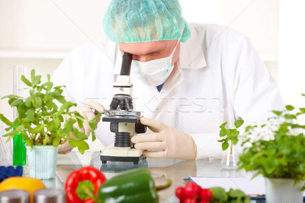 Researcher with microscope with a GMO vegetables in the laborato Stock photo © Amaviael