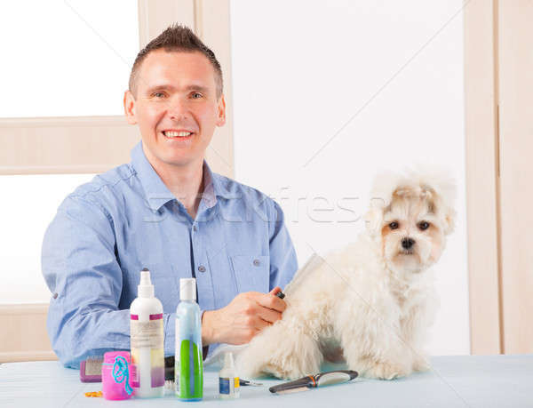 Cão sorridente homem mão cabelo beleza Foto stock © Amaviael