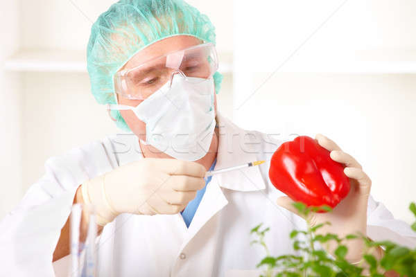 Stock photo: Researcher holding up a GMO vegetable in the laboratory