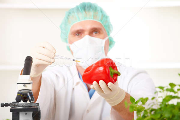 Stockfoto: Onderzoeker · plantaardige · laboratorium · organisme