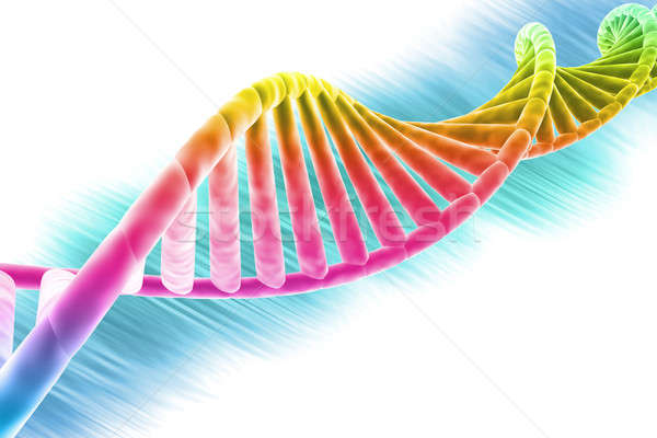 DNA strand bright and colorful  Stock photo © Amaviael