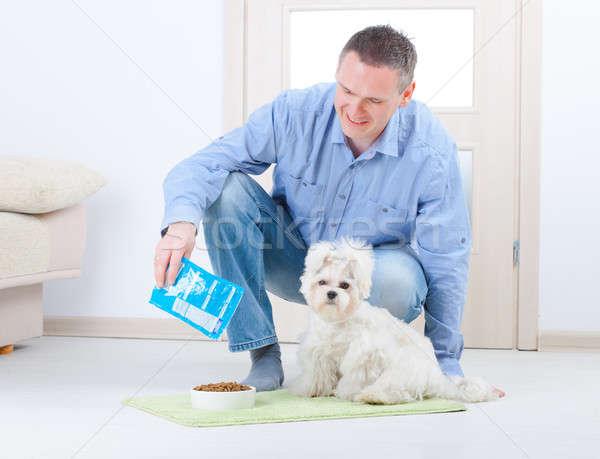 Cão proprietário pequeno piso casa Foto stock © Amaviael
