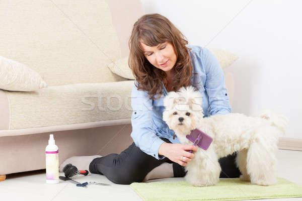 Perro casa mujer sonriente piso mano sonrisa Foto stock © Amaviael