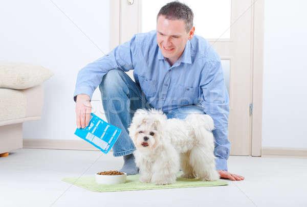 Foto stock: Perro · propietario · pequeño · piso · casa
