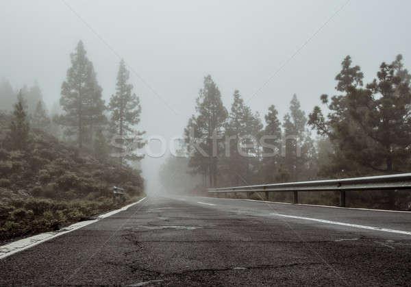 Foggy road to volcano Teide Stock photo © amok