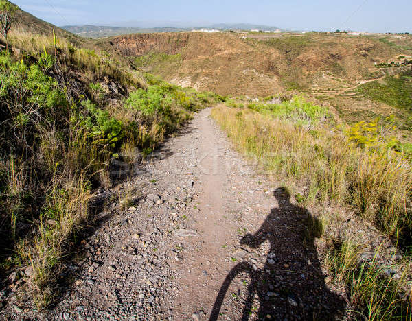 Rocky landscape and silhouette of cyclist. Tenerife. Canary Islands Stock photo © amok