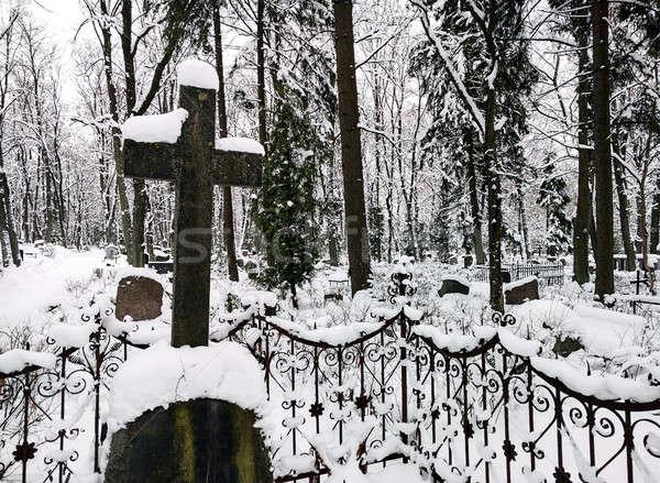 Oude begraafplaats bos natuur sneeuw bomen Stockfoto © amok