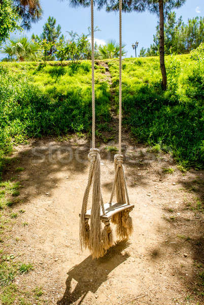 Wooden swing with ropes in tropics Stock photo © amok