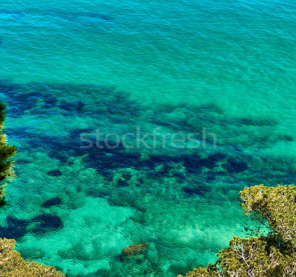 Lagoon with a turquoise water. Costa Brava, Catalonia, Spain Stock photo © amok