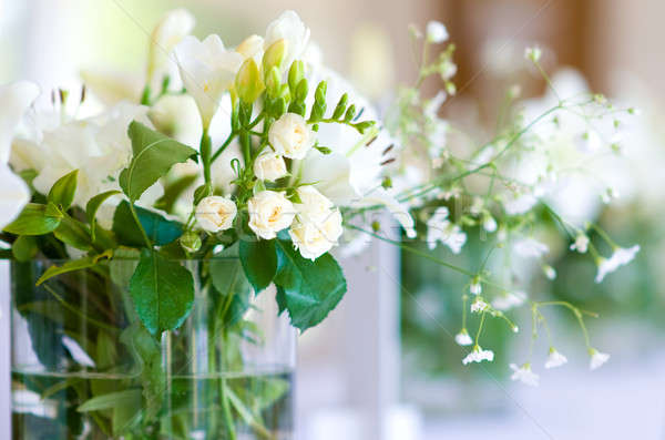 Photo stock: Belle · bouquet · blanche · roses · printemps · amour