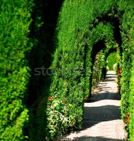 Alhambra garden in Granada, Spain Stock photo © amok