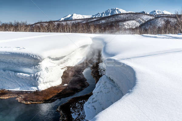 Griffin Ivanova, hot spring in the Nalichevo National Park Stock photo © amok