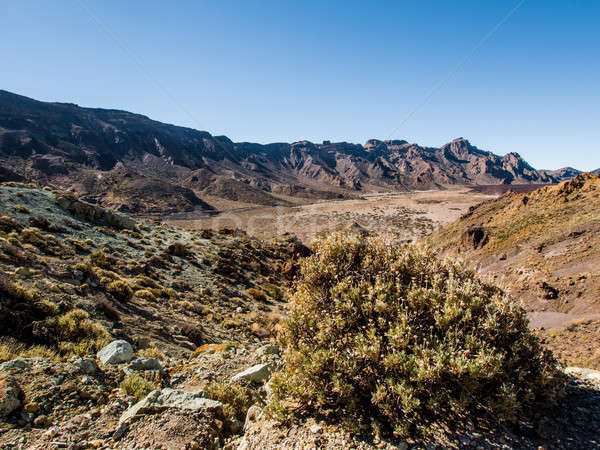 Desert landscape of Volcano Teide National Park Stock photo © amok