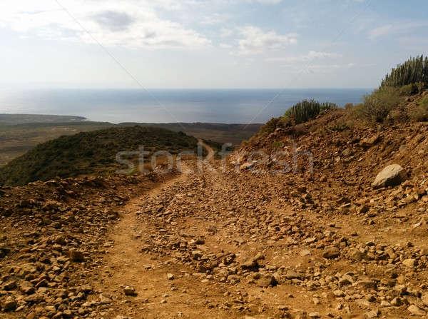 テネリフェ島 カナリア諸島 スペイン 風景 砂漠 美 ストックフォト © amok