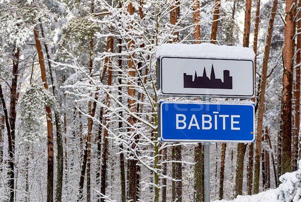 Bomen gedekt sneeuw Letland noordelijk Europa Stockfoto © amok