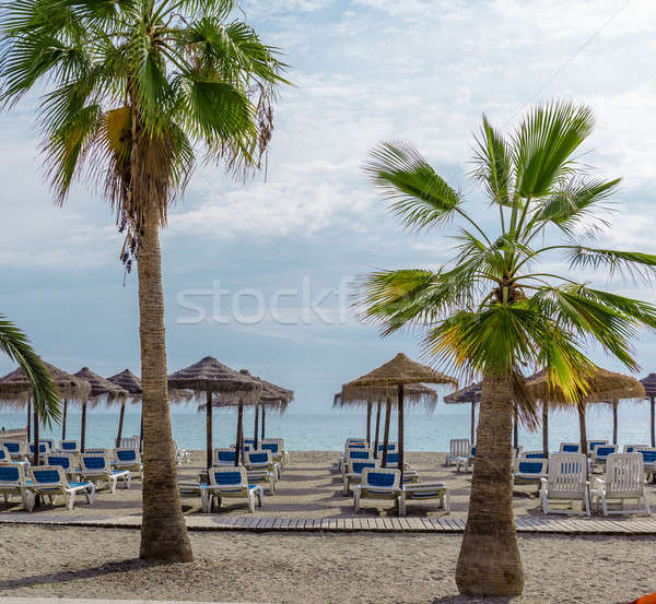Parasols with deckchairs on the beach. Nerja, Spain Stock photo © amok