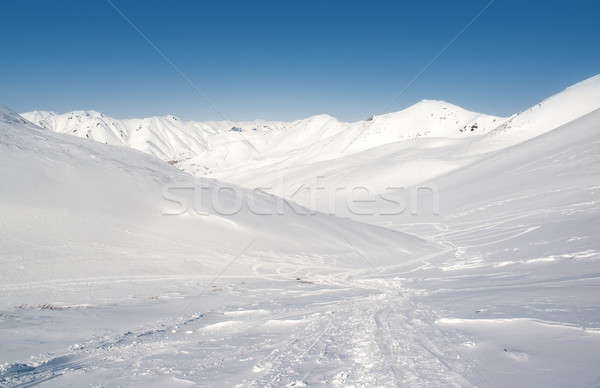 Pinachevsky pass, route through a ridge in Kamchatka. Russia Stock photo © amok