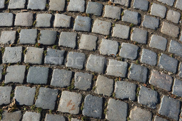 Paving stones texture Stock photo © amok