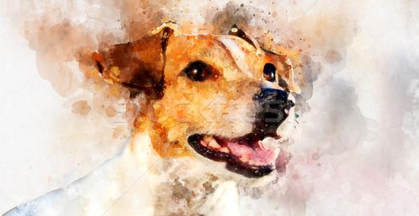 Digitális vízfesték festmény jack russell terrier kutya lány Stock fotó © amok