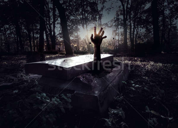 Hand rising out from the grave Stock photo © amok