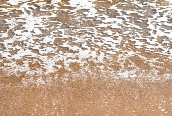 Surf. Close-up of a sea foam and sandy coast Stock photo © amok