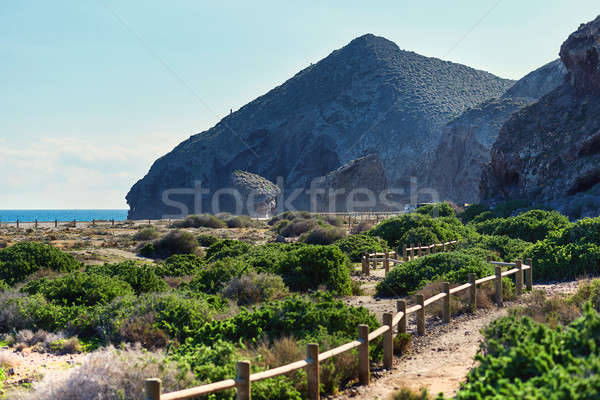 Picturesque Playa de Los Muertos. Spain Stock photo © amok