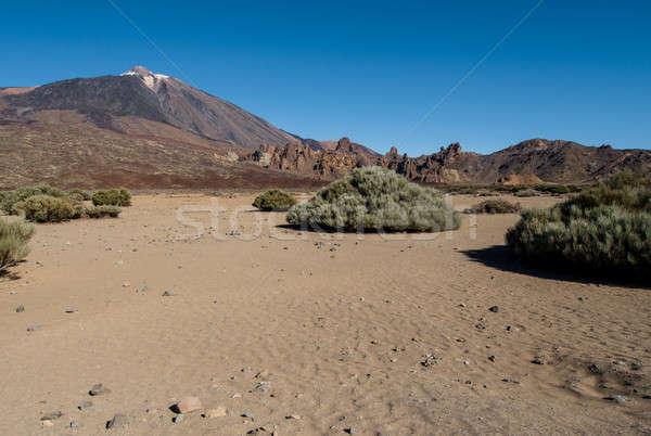 Manzaralı görmek volkan tenerife gökyüzü Stok fotoğraf © amok