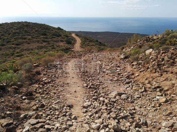 Landschap tenerife Spanje hemel woestijn Stockfoto © amok