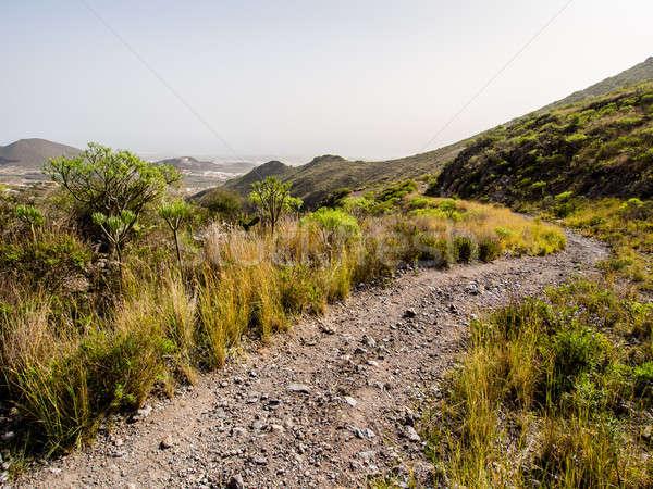 Paisagem tenerife canárias Espanha céu deserto Foto stock © amok