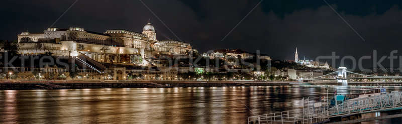 Panorama of Royal Palace or Buda Castle at night. Budapest, Hungary Stock photo © amok