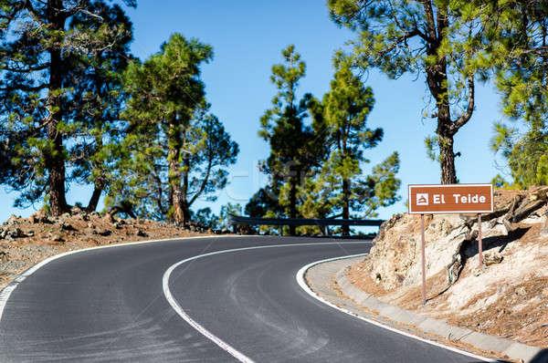 Estrada vulcão tenerife canárias Espanha natureza Foto stock © amok