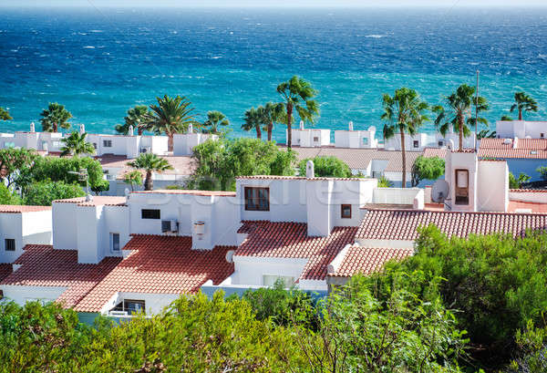 View to the rooftops of houses and Atlantic ocean Stock photo © amok