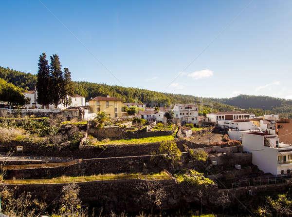 типичный деревне Тенерифе Канарские острова Испания природы Сток-фото © amok