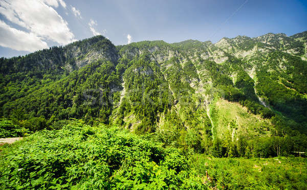 Beautiful mountains landscape of Austria Stock photo © amok