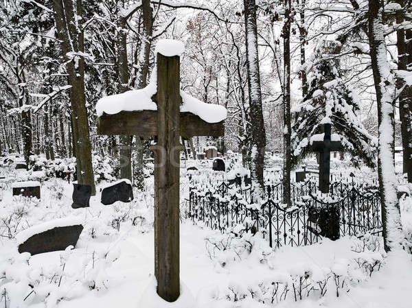 Eski mezarlık orman doğa kar ağaçlar Stok fotoğraf © amok