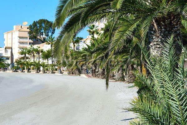 Boş plaj manga İspanya sahil Stok fotoğraf © amok