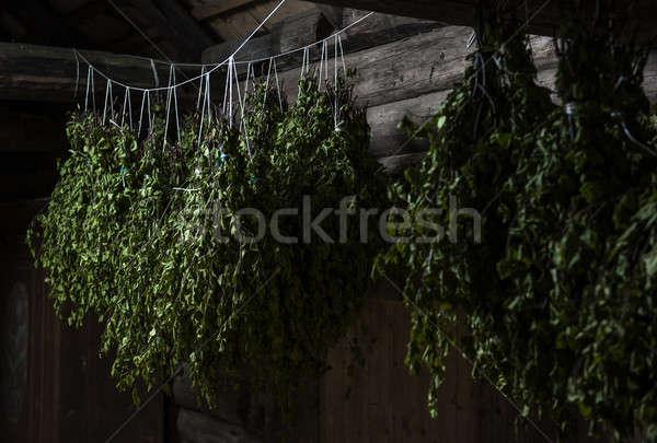 Nyírfa seprű bent gőz szoba fal Stock fotó © amok