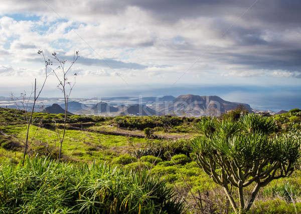Belo paisagem tenerife canárias Espanha céu Foto stock © amok