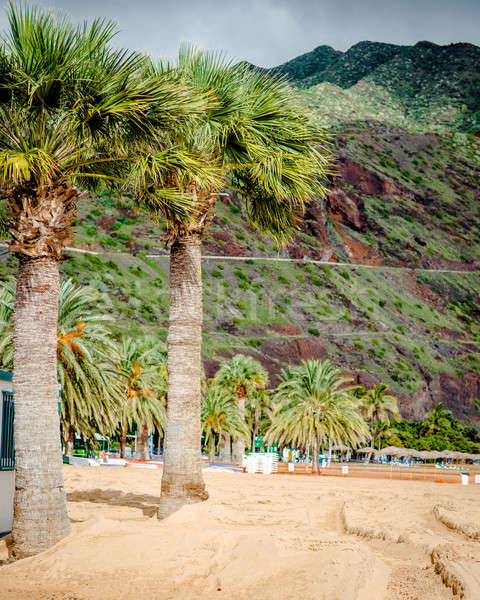 Praia tenerife canárias Espanha paisagem beleza Foto stock © amok