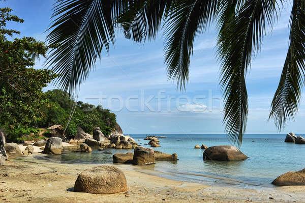 Tropical Lamai beach, Thailand Stock photo © amok